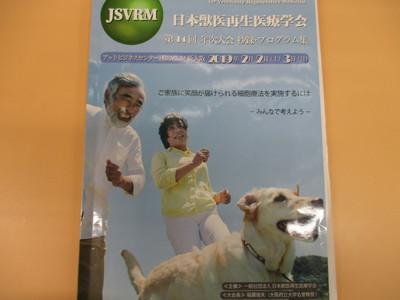 IMG_6867.JPG