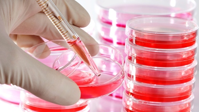 cell-culture-petri-dish-2.jpg