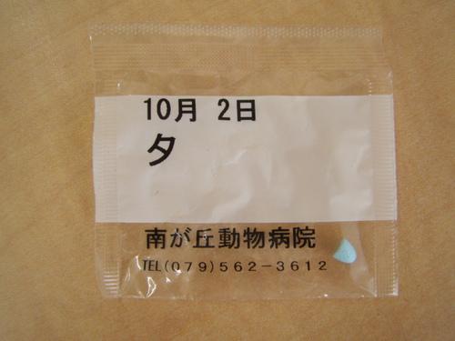 DSC09238.JPG