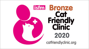 Bronze Cat Friendly Clinic 2020